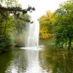 Más de 100 años de historia en Türkenschanzpark