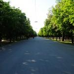 El parque más grande de la ciudad