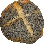 Viena, la meca del pan