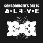 El gato de Schrödinger es vienés