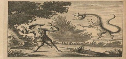 tatzelwurm atacando