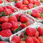 Recoge tus propias fresas en Viena